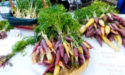 4H Carrots on Table for Sale