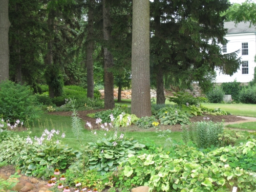 The Hosta Garden - Tollgate Farm and Education Center