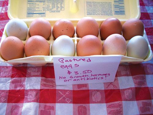 Michigan Fresh Chicken Eggs E3216 Msu Extension