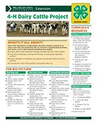 MI 4-H Dairy Cattle Project Snapshot