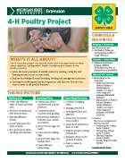 MI 4-H Poultry Project Snapshot