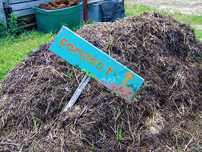 A pile of compost