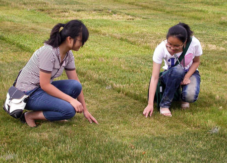 Two people looking at lawn height.