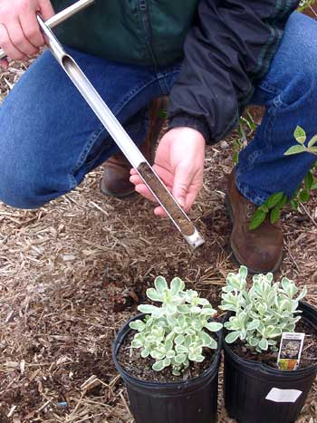 A soil probe being used