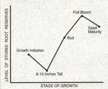 alfalfa growth stages and level of stored root reserves