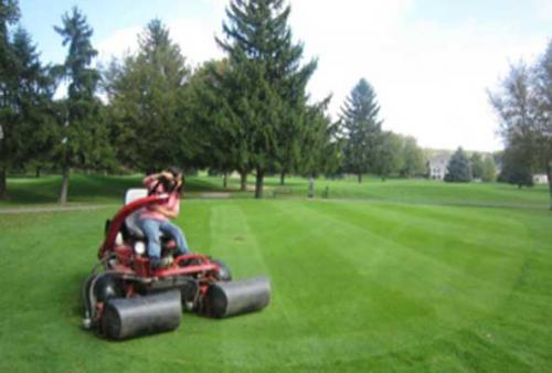 China Turfgrass Program Student / Intern Using turf rolling equipment