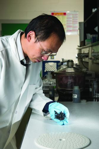 MSU assistant professor with the Department  of Plant, Soil and Microbial Sciences Wei Zhang  examines a sample of biochar in his laboratory.