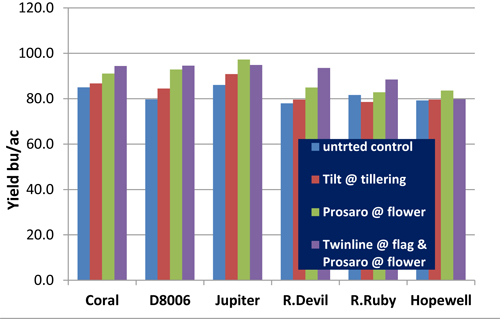 Effects of fungicides on the yield of wheat varieties
