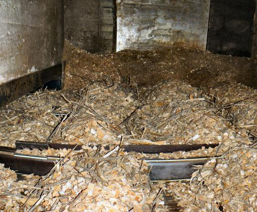 Wood chip storage buildings have floor designs engineered to move chips onto conveyor systems.