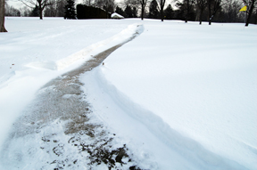Shoveled path