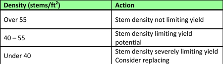 Actions to take if your stand has been insured, based on stem density.
