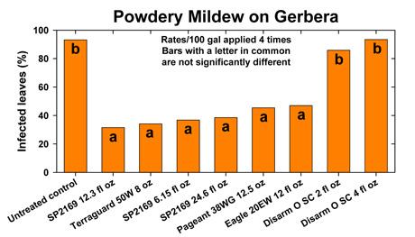 Greenhouse disease update for Powdery mildew | MSU Extension