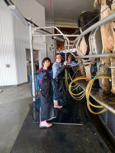 Coffey family milking cows with Lee Su Jin, exchange student from Korea.