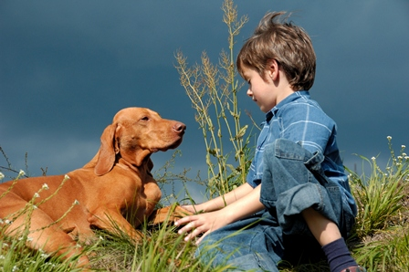 Young boy training his dog.