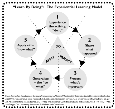 Depiction of the five step Experiential Learning Model