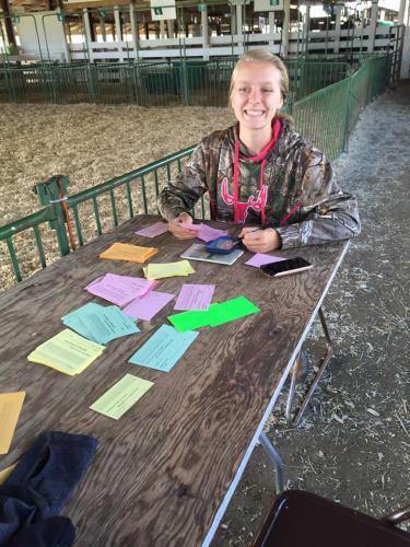 Grace Schmidt helping with the livestock judging contest.