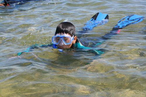 Great Lakes and Natural Resources Camper snorkeling