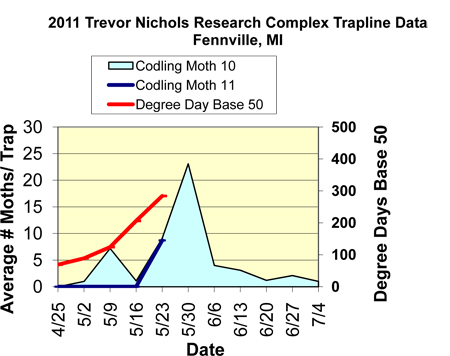 Graph displaying average number of moths caught per trap between 4-25 and 7-04.