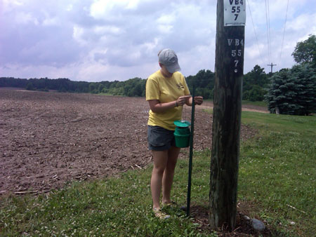 western bean cutworm monitoring trap