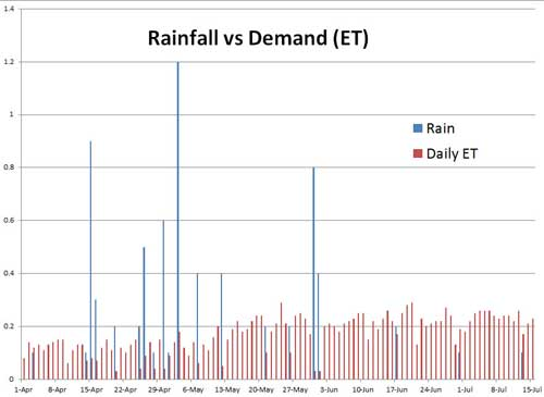 Daily demand and rainfall