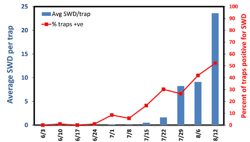 SWD monitoring graph