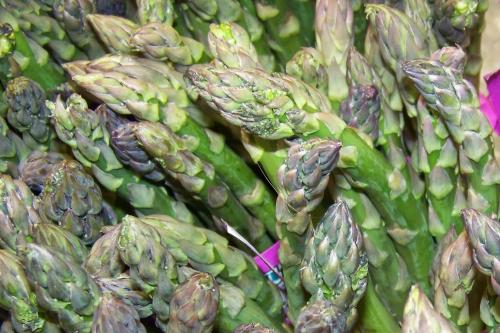 asparagus photo by Mary Dunckel