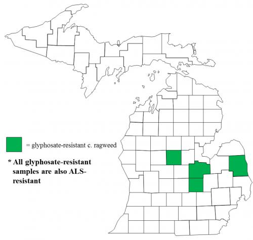 Map of Common ragweed distribution in Michigan