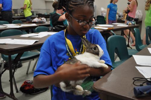 Girl holding rabbit at expo days