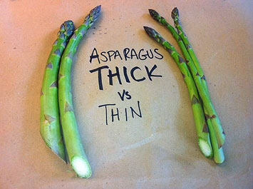 Asparagus thick vs. thin