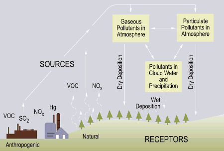 Diagram caption: This diagram shows the sources of contaminants that resulting acid rain.