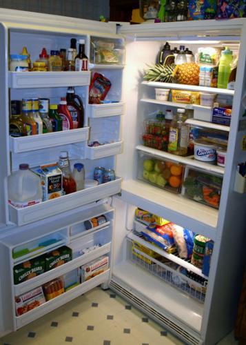 Tips for your health and a healthy refrigerator msu - Temperatura freezer casa ...