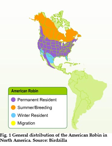 General distribution of the American Robin in North America