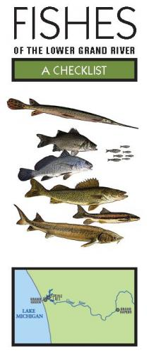 Fishes of the Lower Grand River Checklist cover image.