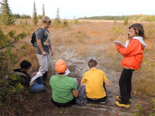 Students collecting data in the field image.