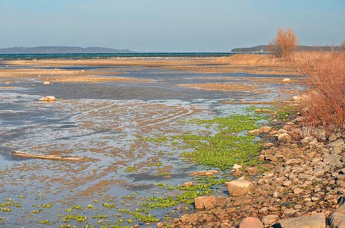 East Arm of Grand Traverse Bay image
