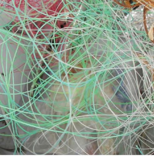 Tangled monofilament fishing line image.