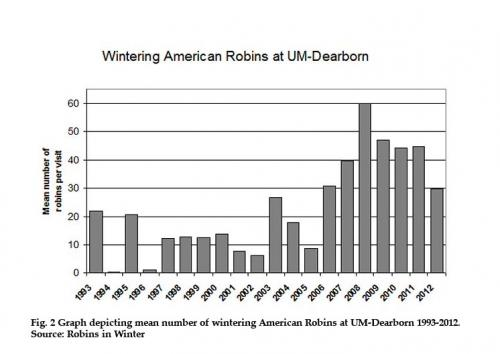 Graph depicting mean number of wintering American Robins at UM-Dearborn 1993-2012