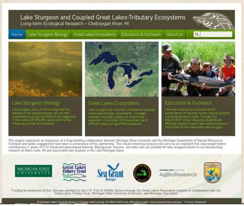 Screen image of the Great Lakes Sturgeon Education website.