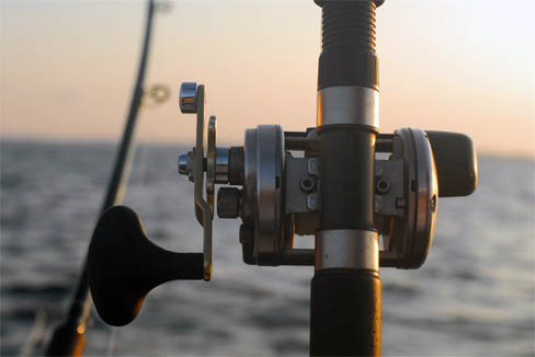 Fishing rod and reel image.