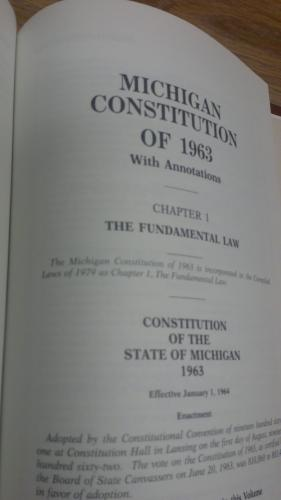 Michigan Constitution