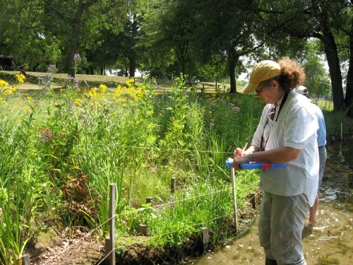 (1)	MSUE Extension Educator Jane Herbert evaluates native plants at a natural shoreline demonstration site in Oakland County