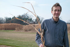 MSU AgBrioResearch, Stephen Hamilton