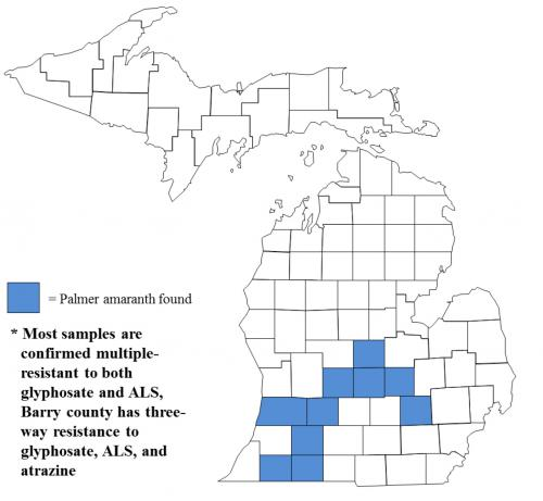 Map of Palmer amaranth distribution in Michigan