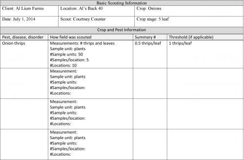 summary sheet template