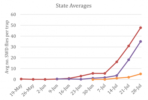 state averages
