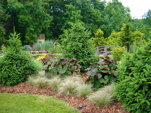 Border Shrubs For Landscaping Pictures to Pin on Pinterest