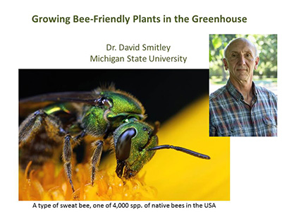 Bee Friendly webinar