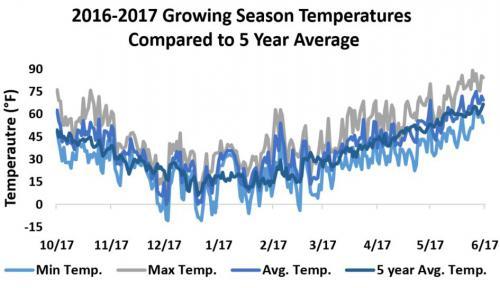 Temperature summary graph