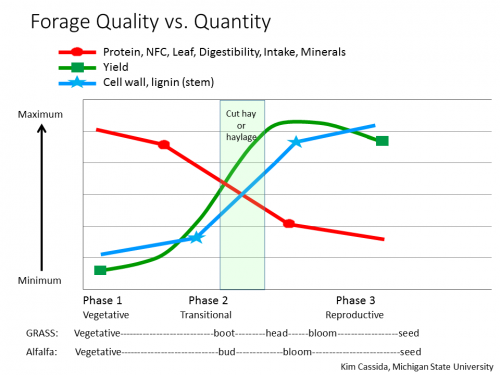 forage quality graph