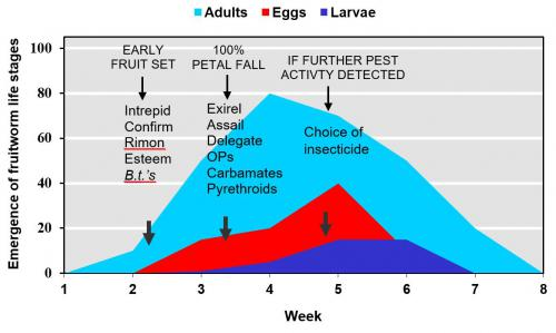 Fruitworm emergence graph